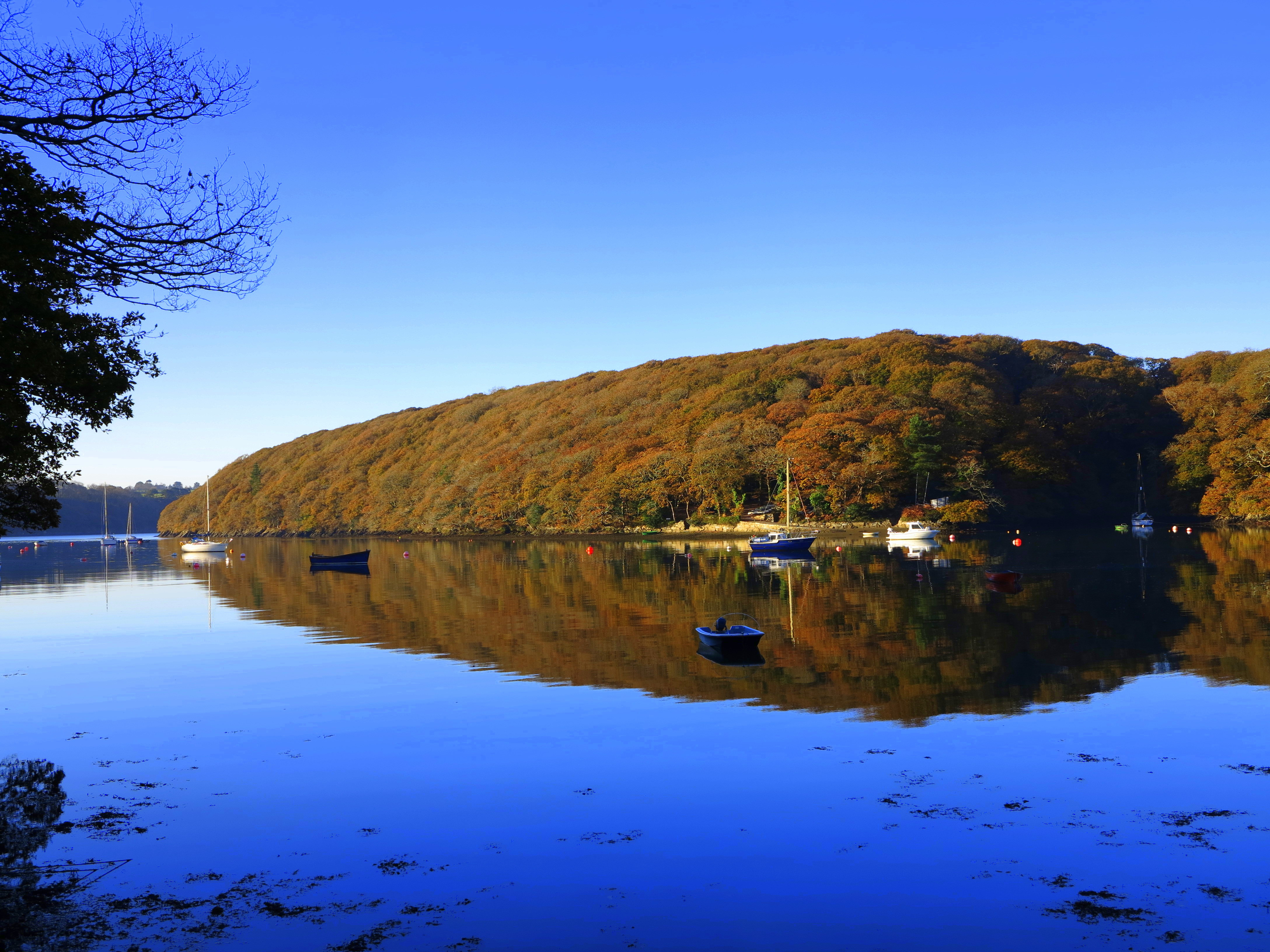 Autumnal Cruises and October Half Term!