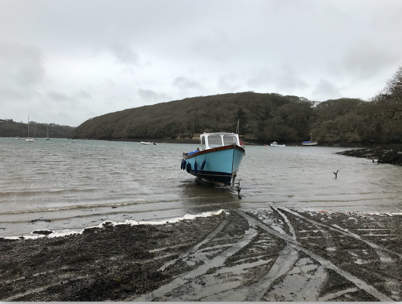 Boat Launched for 2019