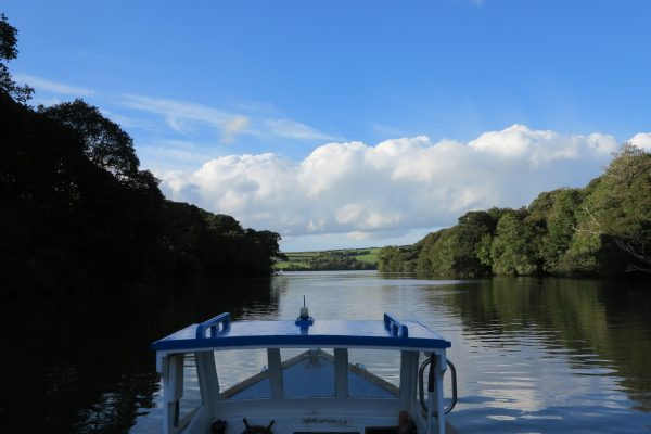 4 April Cruising along Frenchman's Creek, Helford River, Cornwall
