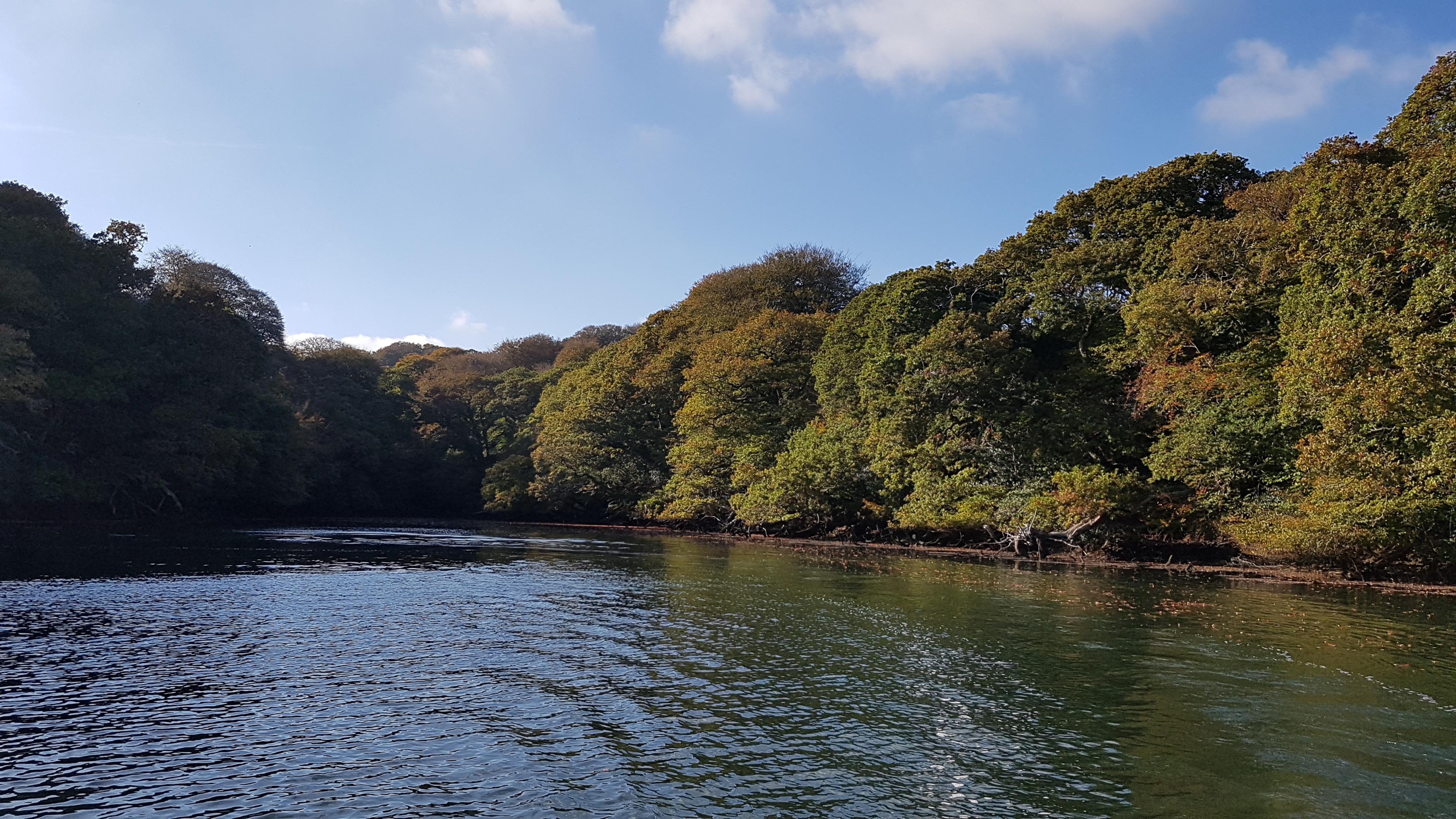 Autumn on the Helford