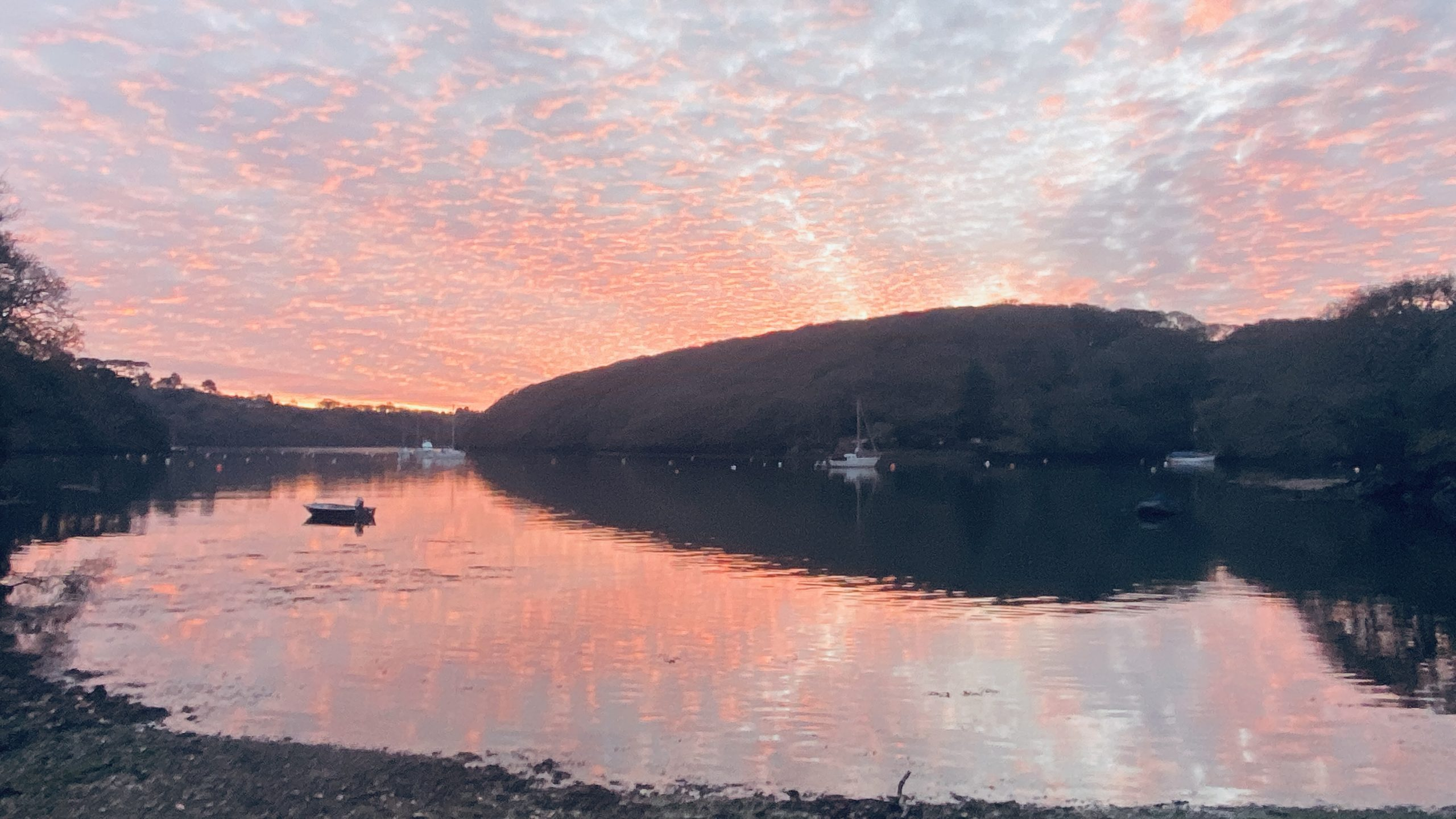 Helford River Cruises will be at The Farmers Market this December in Truro…